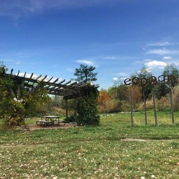 TreeUtah Eco Garden Pavilion